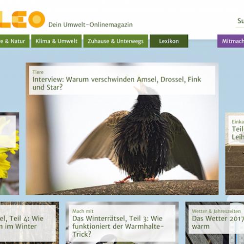 www.oekoleo.de
